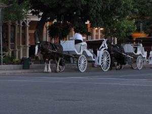 A horse and buggy, shot at f5, 1/15 of a second, ISO 200