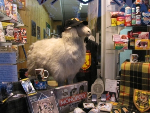 A storefront with a fake sheep in it, shot at f5, 1/20 of a second, ISO 400